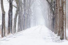 Gidi-sneeuwstorm