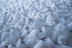 Mignon-1-Sneeuwpatroon
